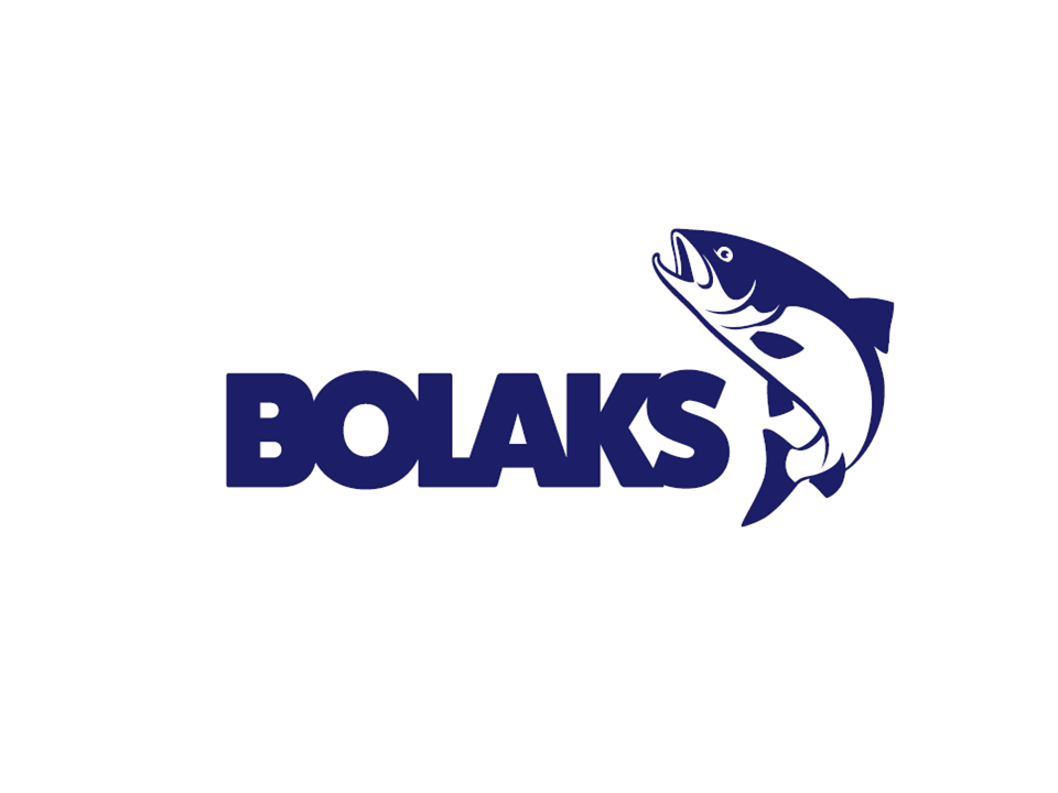 Bolaks AS